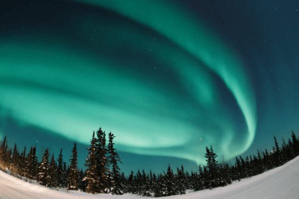 Exprés Luces del Norte
