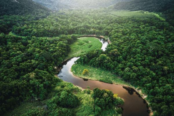 Plan Leticia, Amazonas, Colombia, Peru, Brasil