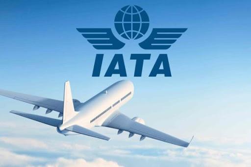 Las nuevas medidas que recomienda IATA para viajar en avión después de la pandemia